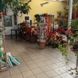 fotografia-biznesowa-kwiaciarnia